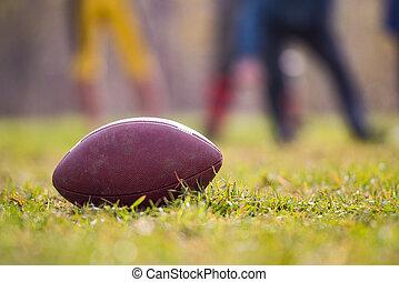 Pro American Football