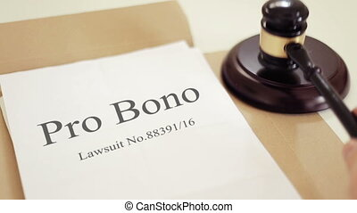 Pro Bono verdict folder with gavel placed on desk of judge...