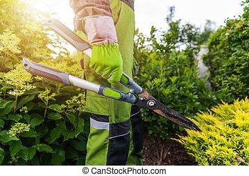 Pro Gardener with Large Scissors in His Hands
