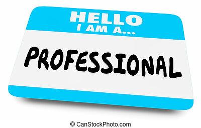 Pro Professional Expert Hello Name Tag 3d Illustration