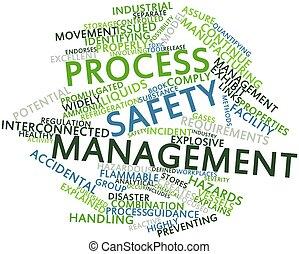 proces, management, veiligheid