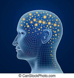 proceso, cerebro humano, pulses.