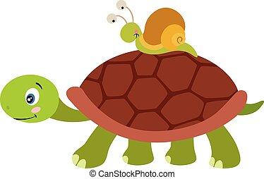 proceso de llevar, lindo, tortuga, caracol, carapace