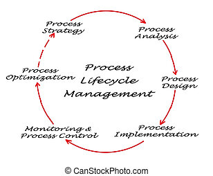Process Lifecycle Management