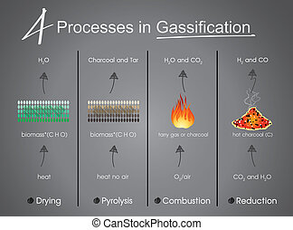 Processes in Gasification Drying, Pyrolysis, Combustion,...