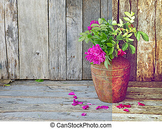 Interesting side by side comparison of a portion of a RAW file and the same image after processing into a vintage style richly colored image of wild roses in a rustic vase on a grunge wood backdrop.
