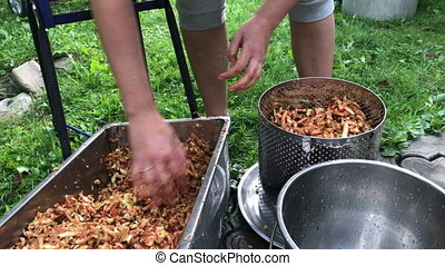 Processing of apples for juice production. apple chips are...