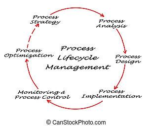 processo, gerência,  lifecycle