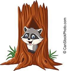 procione, albero vuoto, cartone animato, seduta