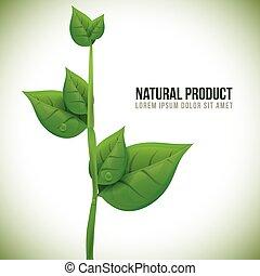 prodotto, naturale, design.