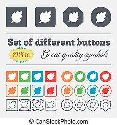 prodotto, set, naturale, fresco, foglia, segno., colorito, vettore, grande, diverso, high-quality, icona, buttons.