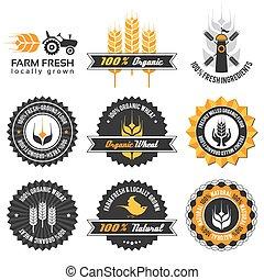 producción, conjunto, trigo, etiqueta