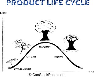 Product Life Cycle (Line) on White Background