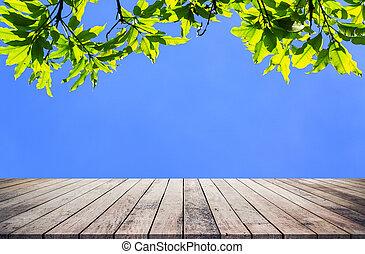 product, natuurlijke , abstract, plank, hout, groene achtergrond, blad, display