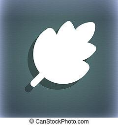 product, natuurlijke , ruimte, blad, symbool, blauwe-groen, abstract, achtergrond, text., fris, schaduw, jouw, pictogram