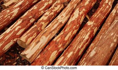 production, bois construction
