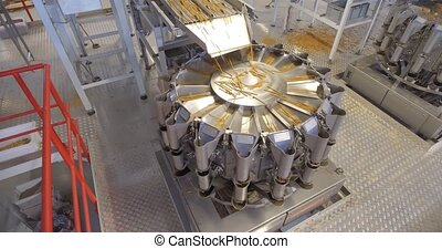 Production line at food processing plant - Production line...