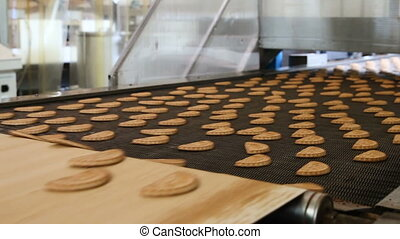 Production line of baking cookies. Conveyor with cookies....