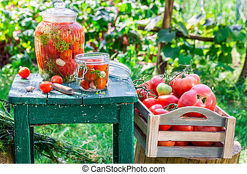 Production of canned tomatoes in the jar