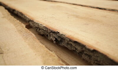 production of wood boards