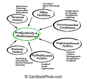 Productivity and Performance
