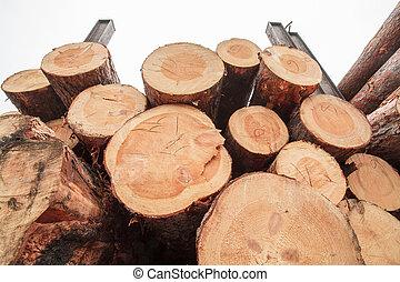 produit, bois, bois