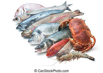 produkty morza, białe tło, odizolowany