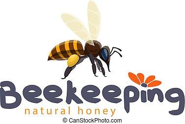 produto, apicultura, abelha, mel, vetorial, ícone
