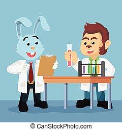 prof, fonctionnement, laboratoire, animal