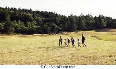 prof, voyage, groupe, champ, marche., enfants, école, nature