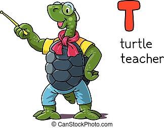 profesión, tortuga, t, alfabeto, teacher., animales, abc.