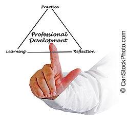 profesional, desarrollo