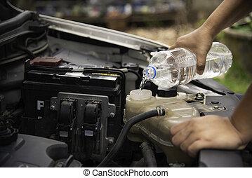 profesional, mecánico, verificar, relleno, agua, a, coche, radiator., concepto, para, seguridad, antes, viaje
