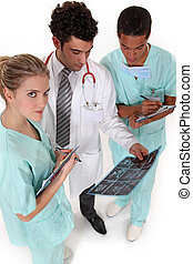profesionales, resultados médicos, paciente, equipo, discutir, radiografía
