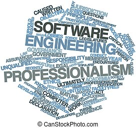 profesjonalizm, technika, software