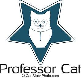 profesor, gwiazda, cat.