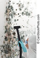 Professional cleaning mould off a wall - Professional man in...