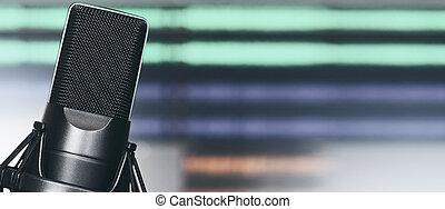 Professional condenser studio microphone. Audio record...