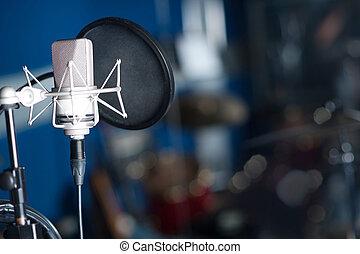 Professional condenser studio microphone - Condenser...
