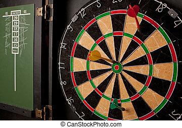 Professional Dart Board - A professional dart board enclosed...