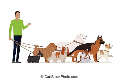 Professional Dog Walking Service Banner.