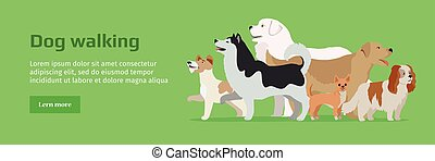 Professional Dog Walking Service Banner. - Professional dog...