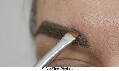 Professional eyebrow makeup tints special brush eyebrow...