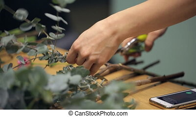 Professional flower arranger cuts a eucalyptus branch with...