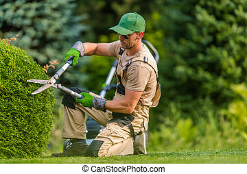 Professional Garden Worker Trimming Plants Using Scissors