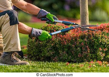 Gardener Trimming Garden Plants Using Scissors
