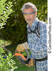 professional gardener trimming hedge