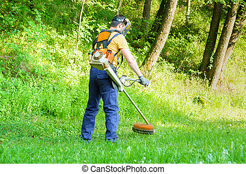 Professional gardener using an hedge clippers in home garden
