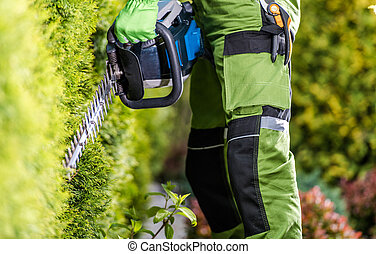 Professional Gardener with Hedge Trimmer Doing His Job in the Garden