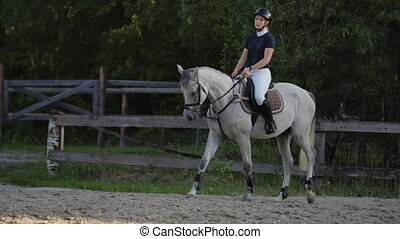 Professional girl rider galloping on a horse. Girl riding a...